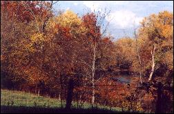 Cave Run Lake Land