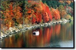 Cave Run Lake - Fishing Photo